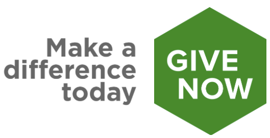 give now button2-green